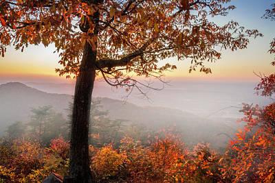 Photograph - Smoky Overlook In The Fog by Debra and Dave Vanderlaan