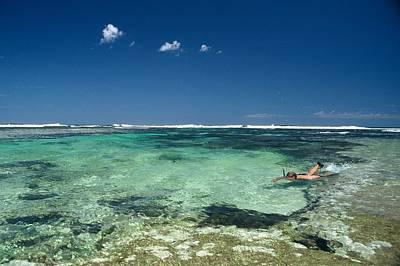 Photograph - Snorkelling Off Western Australian Coast by Jezphotos
