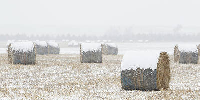 Photograph - Snow And Round Bales 01 by Rob Graham