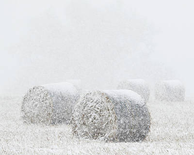 Photograph - Snow And Round Bales 03 by Rob Graham
