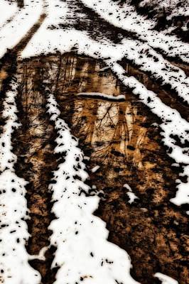 Photograph - Snow Bound Reflections by Lara Ellis