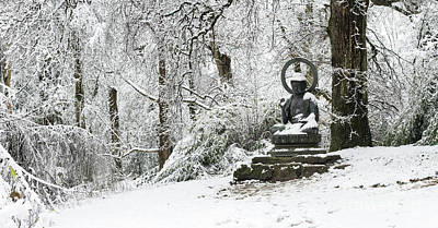 Photograph - Snow Buddha Batsford Arboretum by Tim Gainey