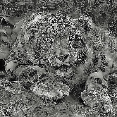 Photograph - Snow Leopard In Black And White by HH Photography of Florida