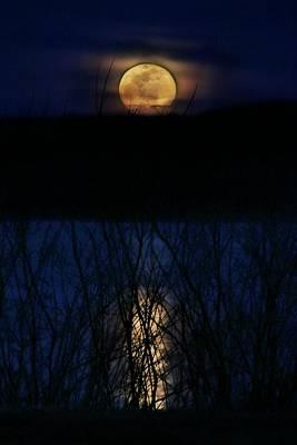 Photograph - Snow Moon by Lorella Schoales