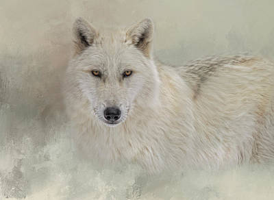 Photograph - Snow Wolf by Kelley Parker