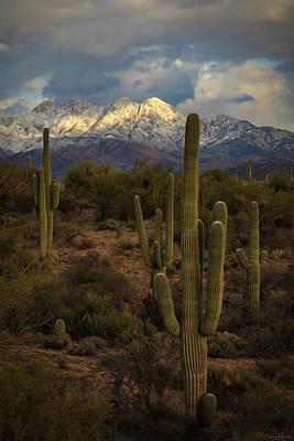 Photograph - Snowcapped Four Peaks by Rick Furmanek