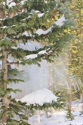 Monochrome Landscapes - Snowfall by Tonya Hance