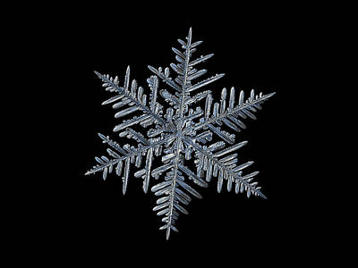 Photograph - Snowflake 2016-01-21 - 1 Black by Alexey Kljatov