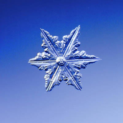 Blue Background Photograph - Snowflake On Blue Background by Fwwidall