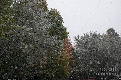 Frank J Casella Royalty-Free and Rights-Managed Images - Snowing on a Fall Day by Frank J Casella