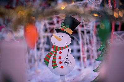 Photograph - Snowman In A Winter Wonderland by Doug Ash