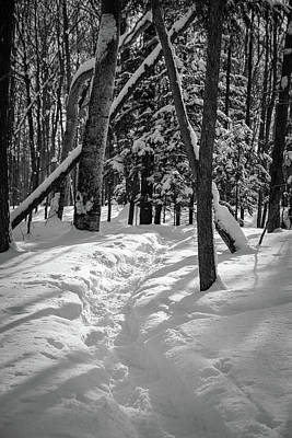Photograph - Snowshoe Path1 by David Heilman
