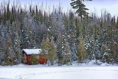 Photograph - Snowy Cabin In The Woods by Susan Rissi Tregoning