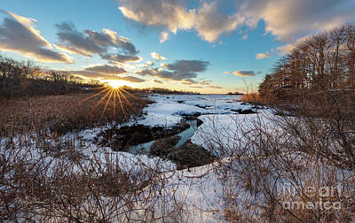Photograph - Snowy Day At Mill Creek Yarmouth Port Massachusetts by Michelle Constantine