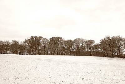 Photograph - Snowy Field With Trees by Christopher Shellhammer