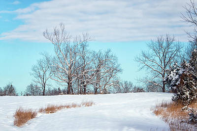 Photograph - Snowy Fields Of Manassas by Travis Rogers