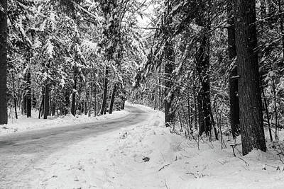 Photograph - Snowy Forest Road In Winter by Betty Denise