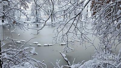 Photograph - Snowy Pond by TJ Fox