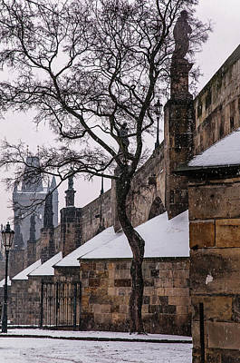 Photograph - Snowy Prague. Under Charles Bridge by Jenny Rainbow
