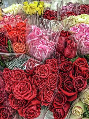 Photograph - So Many Roses by Sharon Popek
