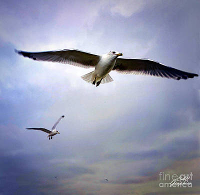 Painting - Soaring High by CAC Graphics