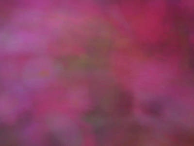 Photograph - Soft Flowing Pastel Abstract Line Background With Pink, Red And Green Shapes by Teri Virbickis