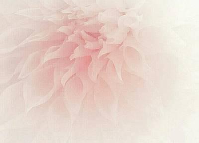 Photograph - Soft Pink Dahlia by The Art Of Marilyn Ridoutt-Greene