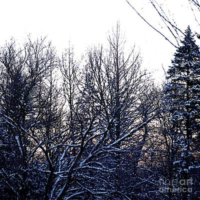 Frank J Casella Royalty-Free and Rights-Managed Images - Soft Winter Sunrise by Frank J Casella
