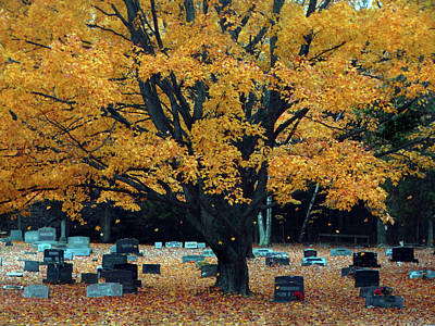 Photograph - Softly Falling In The Cemetery by David T Wilkinson