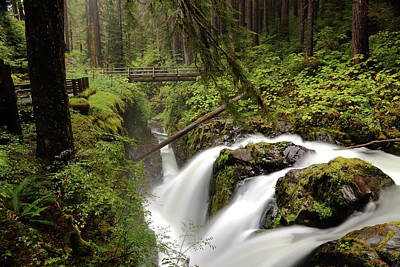 Photograph - Sol Duc Into The Chasm by David Andersen