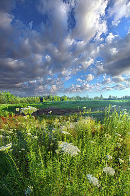 Photograph - Sometimes This Is All You Need by Phil Koch