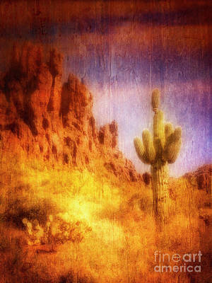 Photograph - Sonoran Desert by Scott Kemper