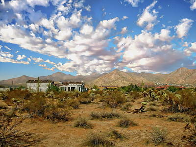 Photograph - Sonoran Desert View by Anthony Dezenzio