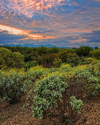 Photograph - Sonoran Valley Sunset V1922 by Mark Myhaver