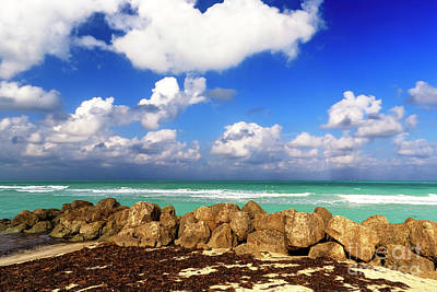 Photograph - South Beach Rocks In Florida by John Rizzuto