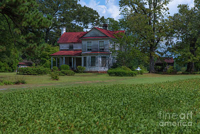 Photograph - South Carolina Country Living  by Dale Powell
