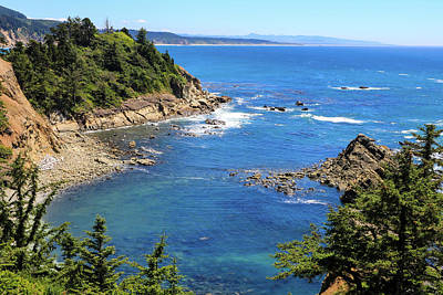 Photograph - South Cove 1, Cape Arago, Oregon by Dawn Richards