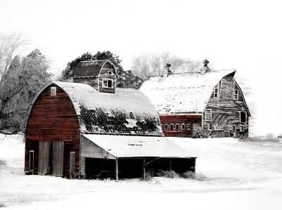 Iowa Photograph - South Dakota Farm by Julie Hamilton