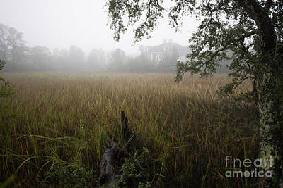 Photograph - Southern Exposure Fog by Dale Powell