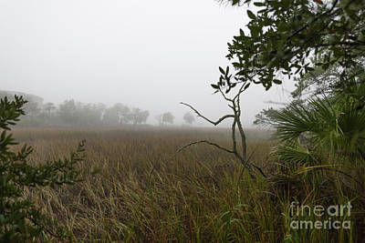 Photograph - Southern Layers Of Fog by Dale Powell