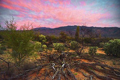 Rincon Mountains Wall Art - Photograph - Southwest Day's End by Chance Kafka