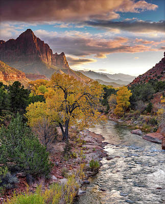 Photograph - Southwest Light Along The Virgin River by Leland D Howard