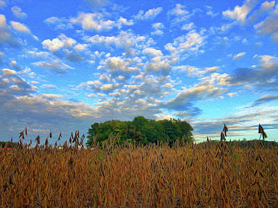 Photograph - Soybean field end of summer by Wendy Erickson