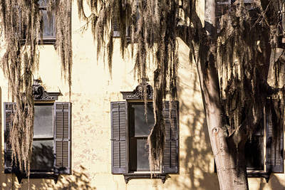 Photograph - Spanish Moss Outside The Window by Framing Places
