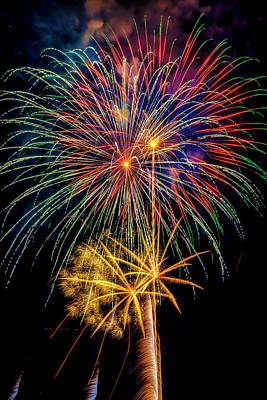 Photograph - Sparkling Bright Fireworks by Garry Gay