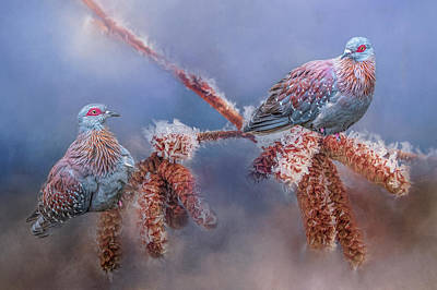 Photograph - Speckled Pigeons by Cindy Lark Hartman