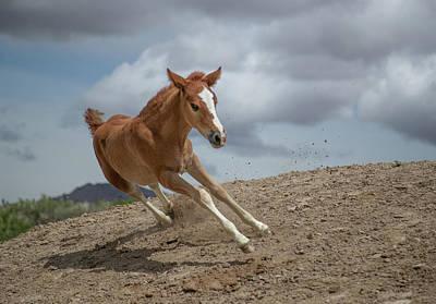 Photograph - Speedster by Kent Keller