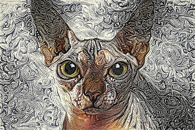 Digital Art - Sphinx Cat by Peggy Collins