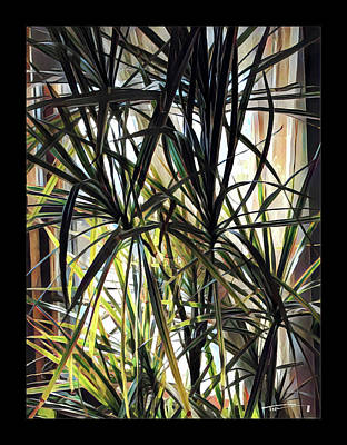 Photograph - Spider Plant by Tim Nyberg