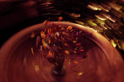 Photograph - Spin by Traci Asaurus